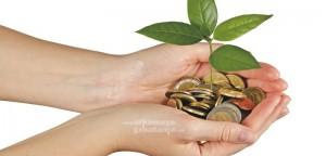 Berapa anggaran biaya yang optimal - Jasa Desain Rumah Online Kontraktor Jogja Konsultasi Desain Gratis